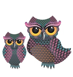 Pink and blue color owl vector