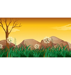 Big rocks near the tree without leaves vector