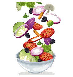 Bowl salad vegetables fresh vitamins vector