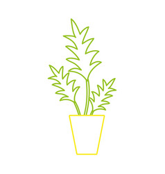 color line nature plant with leaves inside vector image vector image