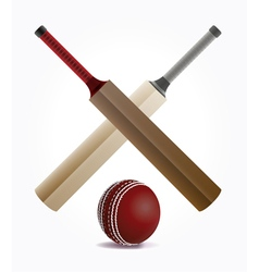 Cricket paddles crossed vector