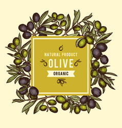 Floral background with olive branches and other vector