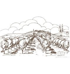 Hand drawn vineyard vector