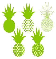 Pineapple silhouettes in green different vector