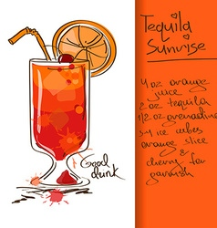 With tequila sunrise cocktail vector