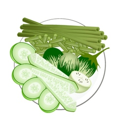 Green eggplants cucumbers and chinese long beans vector