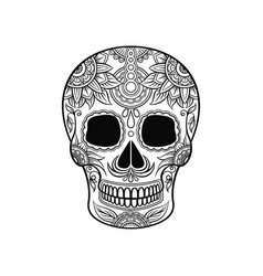 mexican sugar skull with floral ornament day of vector image