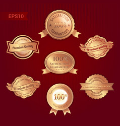set of satisfaction guarantee and premium quality vector image