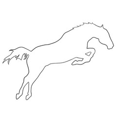 Rearing horse fine silhouette - black over vector