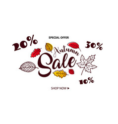 Autumn sale background with falling autumn leaves vector