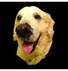 riant dog vector image