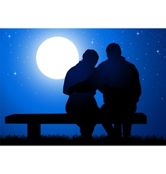 Romantic Night vector image