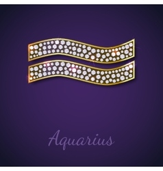 Golden aquarius zodiac signs vector