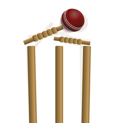 Cricket ball hitting a wicket vector