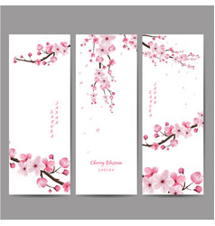 cherry blossom collection greeting cards vector image vector image