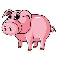 Cute pig on white background vector