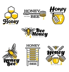 Hand-drawn bee hive honey jar and dipper logo vector