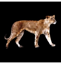 low poly lioness vector image