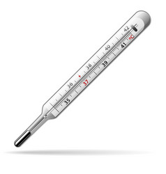 thermometer medical a glass mercury thermometer vector image vector image