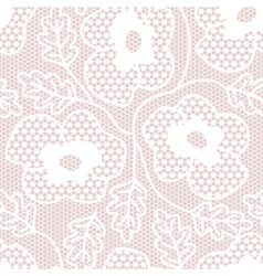 White lace seamless pattern vector image