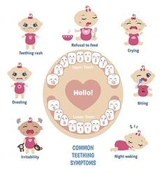 Baby teething symptoms vector