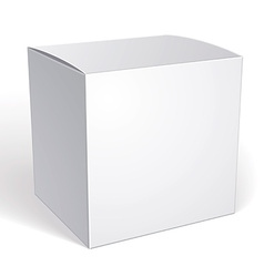 blank box isolated on white background template vector image vector image