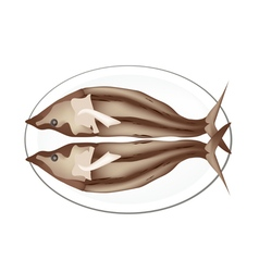 Dried Fish Isolated on A White Background vector image