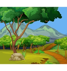 Scene with hiking track in the woods vector