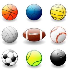 sport equipement vector image