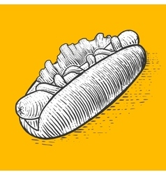 Hot dog fast food engraving style vector image
