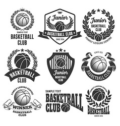 Basketball logo set vector image