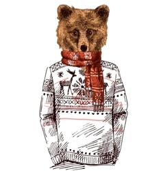 Bear dressed in knitted sweater vector