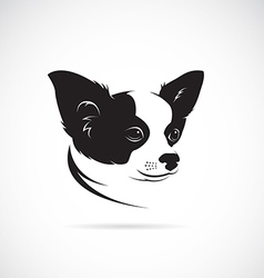 image of an chihuahua dog vector image