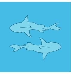 silhouette of two sharks blue background top view vector image