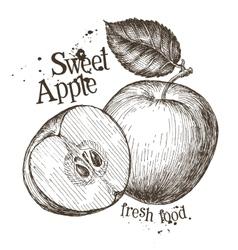 Apple logo design template fresh fruit vector