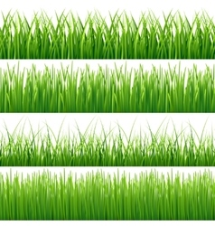 Green seamless grass set vector