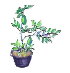Sketch of lemon tree vector