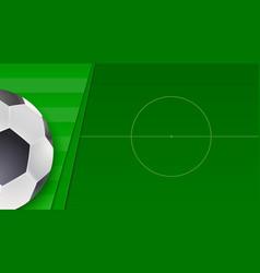 Soccer or european football green field vector