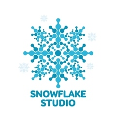 Geometrical abstract snowflake logo vector