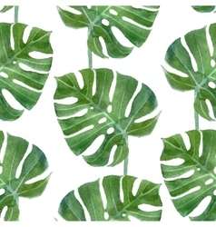 Watercolor monstera leaf seamless pattern vector