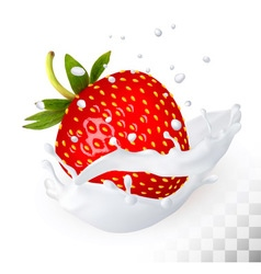 Red strawberry in a milk splash on a transparent vector