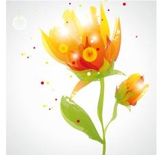transparent flowers vector image