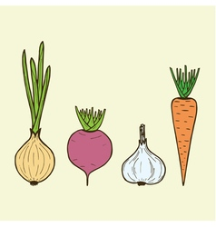 Vegetarian vegetables - onion carrot beet garlic vector