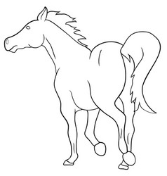 rearing horse fine silhouette - black over vector image