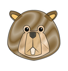 cartoon beaver teeth animal of forest vector image vector image