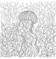 Jellyfish medusa in zentangle style hand drawn sea vector