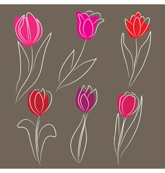 hand drawn tulips set vector image