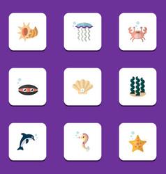Flat icon marine set of sea star conch alga and vector