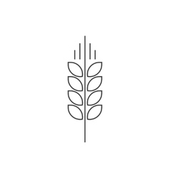 Wheat spike logo grain ear icon organic vector