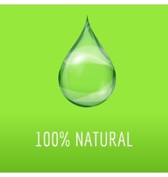 Green natural template with a water drop vector image vector image